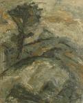 Chartreuse Chamechaude2 81x100 2011