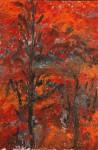Chartreuse Chamechaude7 130x195 H sur toile 2011