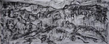 pestera piatra altarului 4 (charcoal) 50x120 2016