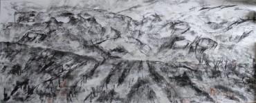 pestera piatra altarului 17 (charcoal) 50x120 2016