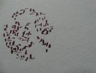 Traverse  dessin papier diam5 2018 (5)