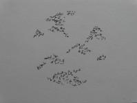 Traverse encre sur papier diam7cm 2018 (8)